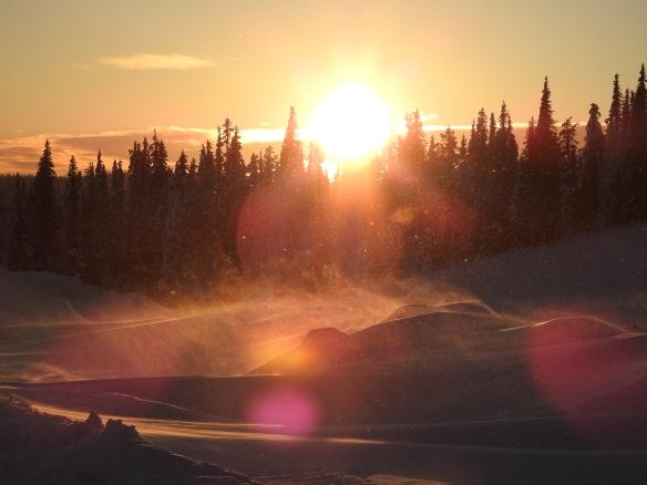 Virvlande snö i motljus. Foto: Annie Sundbäck