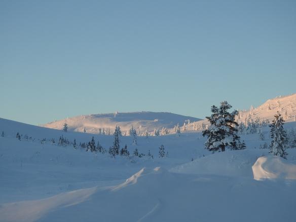Snölandskap med berg och snötäckta granar. Foto: Sara Lövestam