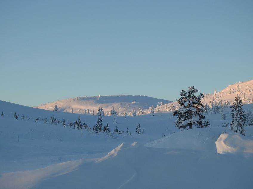 snölandskap med berg och snötäckta granar